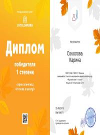 """Соколова Карина, intolimp.org """"Русский язык 11 класс"""""""