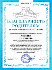 """Манина Елизавета, международный проект учителей """"VIDEOUROKI.NET"""""""