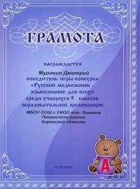 """""""Русский медвежонок - языкознание для всех"""" (2017), Муравин Дмитрий, 6 класс"""